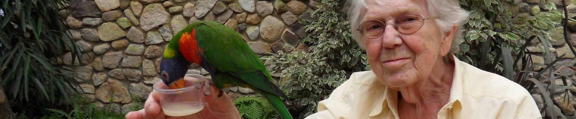 Category: Weltvogelpark